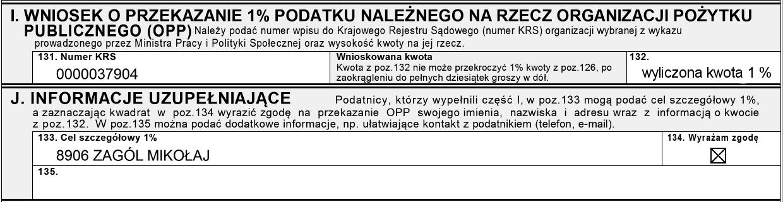 pit2013_8906ZagolMikolaj