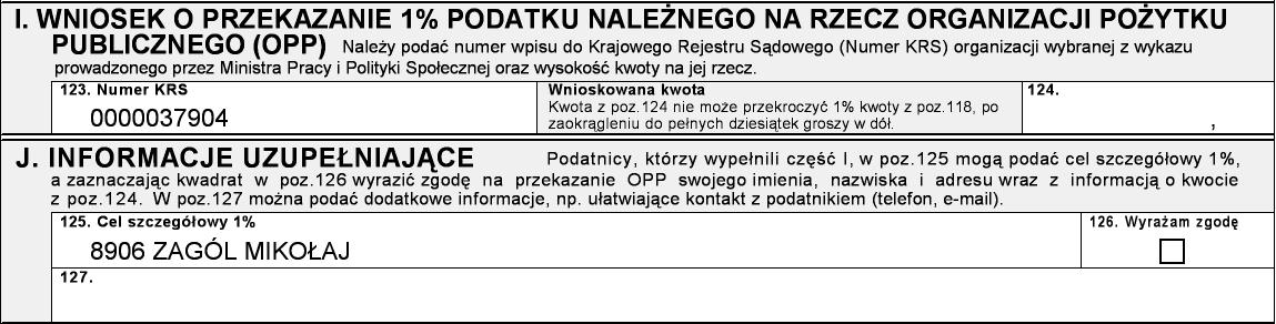 pit2012_8906ZagolMikolaj