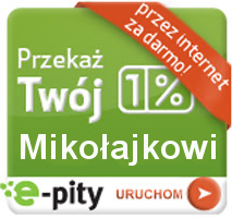 Program do rozliczania PIT 2013 online na rzecz Mikołajka - e-pity 2013